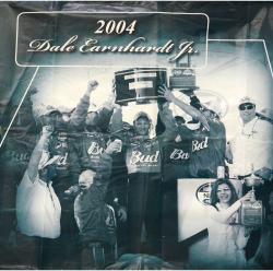 2009 Daytona 500 Memorable Moments 80'' x 83'' 2004 Dale Earnhardt, Jr. Backstretch Banner Panel - Mounted Memories