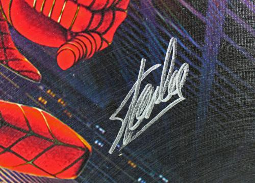 Stan Lee Spider-Man Signed 16x20 Framed Canvas PSA/DNA #W18526