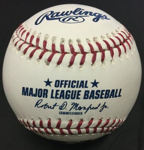 Ralph Macchio Karate Kid Signed Baseball INS Wax on Wax Off Mint Autograph COA