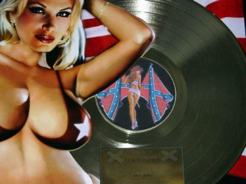 Lynyrd Skynyrd Freebird Gold Record Display non-RIAA LP cd AFTAL