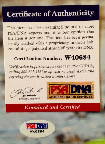 "Norman Reedus Daryl Dixon ""THE WALKING DEAD"" Signed 11x14 Photo PSA/DNA COA #9"