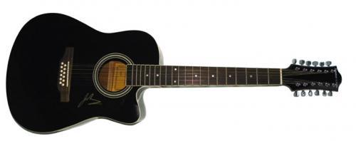 Goo Goo Dolls Johnny Rzeznik Signed 12String Ac Electric Guitar AFTAL