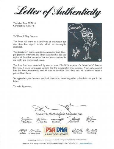 Stan Lee Signed 16x20 Canvas w/ Spider-man Sketch PSA/DNA #W00378