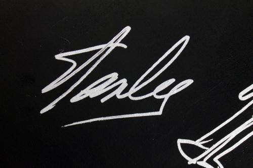 Stan Lee Signed 16x20 Canvas w/ Spider-man Sketch PSA/DNA #W00379