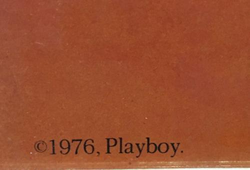 Bruce Springsteen orignal 25x38 March 1976 Playboy Poster framed rare Hefner
