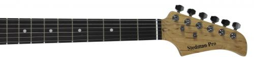 Staind (4) Lewis, Mushok, April, & Giancarelli Signed Guitar BAS #A02071