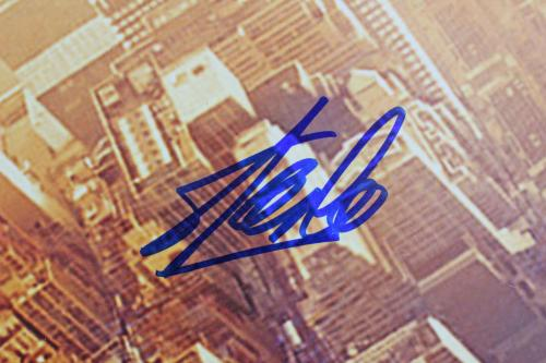 Stan Lee Spider-Man Signed 16x20 Photo Autographed PSA Itp #6A20816