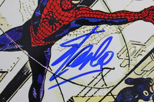 Stan Lee Spider-Man Signed 12x18 Photo Marvel Comics PSA Itp #6A20469