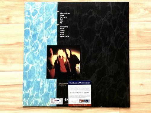 Dave Grohl Nirvana Signed Autograph Nevermind Vinyl Record Album Psa/dna Coa
