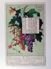 1886 Bugbee & Brownell Pure Spices Photo of Cream Tartar And Week Trade Card