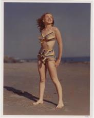 "1946 Marilyn Monroe Photo at Zuma Beach by Joseph Jasgur, LE 51/55, 14"" x 11"