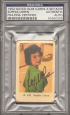 1952 Dutch Gum Cards A Set SOPHIA LOREN Signed Card PSA/DNA SLABBED #83690089