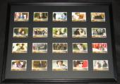 2009 Twilight New Moon Framed 18x24 Card Set Display NECA