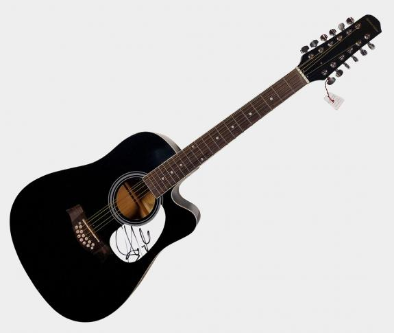 Aerosmith Steven Tyler Autographed Signed 12 String Acoustic Guitar & Proof