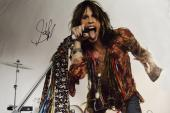Aerosmith Steven Tyler Signed 24x36 Canvas Screaming Poster Photo Video Proof