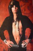 Aerosmith Steven Tyler Signed 24x36 Canvas Vintage Poster Photo Video Proof