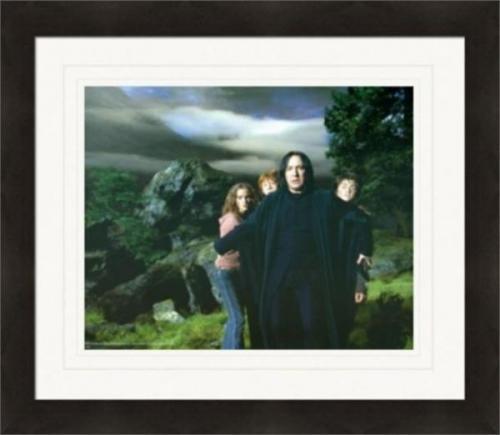 Alan Rickman Daniel Radcliffe Emma Watson Rupert Grint Harry Potter 8x10 photo matted framed #12 Severus Snape Ron Hermione