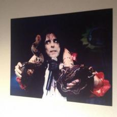 ALICE COOPER ROCK N ROLL LIVE SIGNED HOT! 8X10 PHOTO AUTOGRAPHED IP! COA e