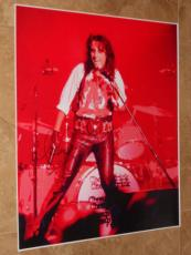 Alice Cooper Signed 20x24 Photo Poster Live Rock Show Autographed Ip! Coa+proof