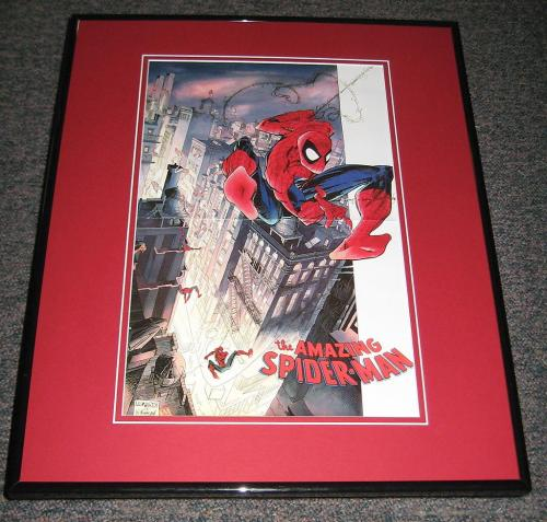 Amazing Spiderman Framed 10x15 Poster Leonardi & Wilkinson