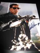 Arnold Schwarzenegger Signed Autograph 11x14 Photo Terminator Promo Proof Coa L