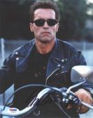 Arnold Schwarzenegger Terminator Autographed Signed 8x10 Photo Certified PSA/DNA