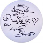 """Artimus Pyle Autographed Evans 14"""" Drum head"""
