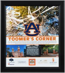 Auburn Tigers Oaks at Toomer's Corner Framed 15'' x 17'' Collage with Piece of Authentic Oak
