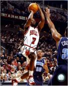 Chicago Bulls Ben Gordon Autographed Photo -