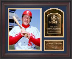 "Johnny Bench Baseball Hall of Fame Framed 15"" x 17"" Collage with Facsimile Signature"