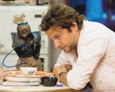 Bradley Cooper Signed 8x10 Photo Authentic Autograph The Hangover Coa B