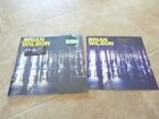 Brian Wilson SIGNED No Pier Pressure Vinyl Barnes & Noble LP Beach Boys RSD 2015