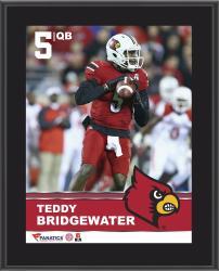 "Teddy Bridgewater Louisville Cardinals Sublimated 10.5"" x 13"" Plaque"