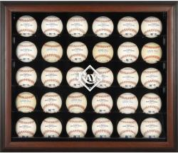 Tampa Bay Rays Logo Brown Framed 30-Ball Display Case