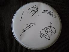 "Buckcherry Autographed Signed 10"" DRUMHEAD PSA Guaranteed #1 Josh Todd +3"