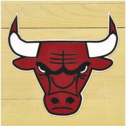 "NBA Chicago Bulls 12""x12"" Logo Floor Piece"