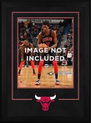 """Chicago Bulls Deluxe 16"""" x 20"""" Frame"""