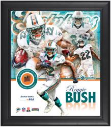 Miami Dolphins Reggie Bush Framed Collage with Football - Mounted Memories