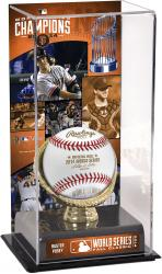 "Buster Posey San Francisco Giants 2014 World Series Champions Gold Glove 10"" x 5.5"" Baseball Display Case"