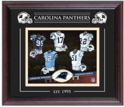Carolina Panthers Team Evolution 8'' x 10'' Framed Photo - Mounted Memories