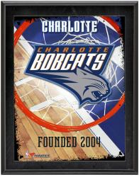 "Charlotte Bobcats Team Logo Sublimated 10.5"" x 13"" Plaque"