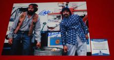 CHEECH MARIN & TOMMY CHONG up in smoke signed 11x14 BECKETT BSA COA 1
