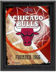 """Chicago Bulls Team Logo Sublimated 10.5"""" x 13"""" Plaque"""
