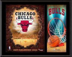 """Chicago Bulls Sublimated 12"""" x 15"""" Team Logo Plaque"""