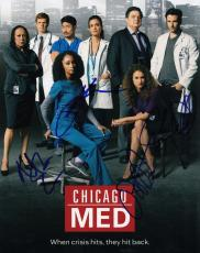 Chicago Med cast signed 8x10 TV Show photograph w/coa Platt  Gehlfuss #1