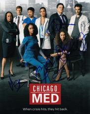 Chicago Med cast signed 8x10 TV Show photograph w/coa Platt  Gehlfuss #2