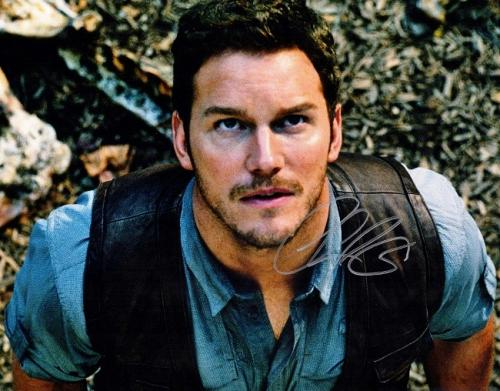 Chris Pratt Signed - Autographed Jurrassic World 11x14 inch Photo - Guaranteed to pass PSA or JSA - Parks and Recreation Actor