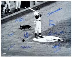"1969 Chicago Cubs Teams Autographed 16"" x 20"" Photograph with 10 Signatures - Mounted Memories"