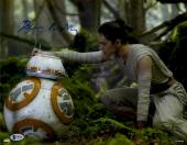 """Daisy Ridley Autographed 11"""" x 14"""" Star Wars The Force Awakens With BB-8 Photograph - Beckett"""