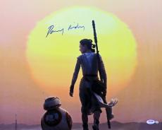 Daisy Ridley Star Wars The Force Awakens Signed 16X20 Photo Steiner & PSA ITP